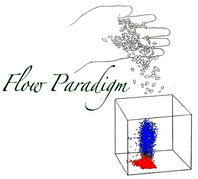 Flow Paradigm Lab / Facility Logo