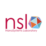 NanoSystems Laboratory Lab / Facility Logo