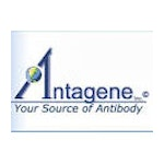 Antagene Inc Lab / Facility Logo