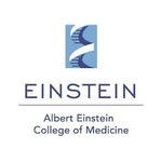 Albert Einstein College of Medicine Zebrafish Core Lab / Facility Logo