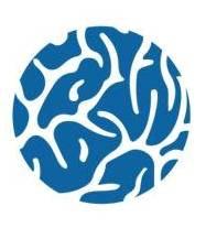 Hadassah BrainLabs Lab / Facility Logo