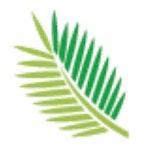 Torreya Insights, LLC Lab / Facility Logo