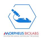 Morpheus Biolabs Inc. Lab / Facility Logo