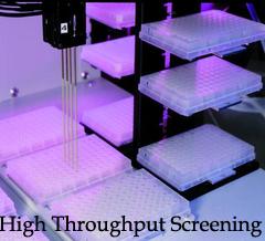 high-throughput-screening.png