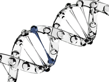 dna-blue.png
