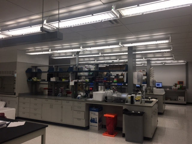 New Lab_Oakdale.jpeg